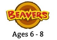 BeaverSection